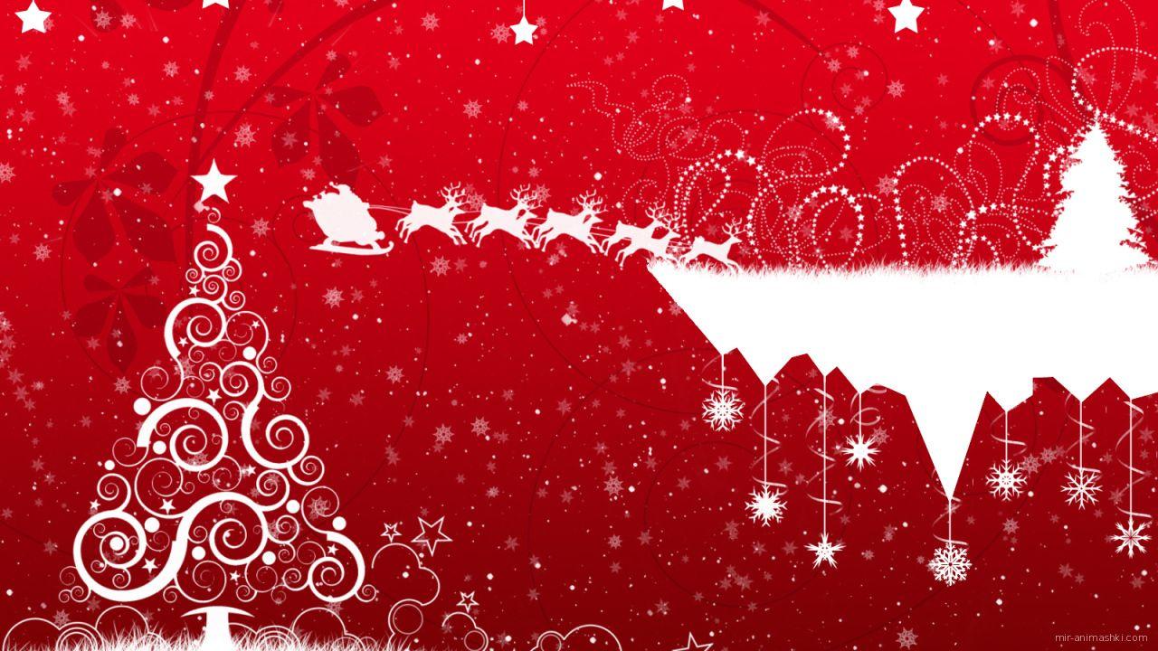 Красно-белая картинка с узорами и ёлкой на рождество - C Рождеством Христовым поздравительные картинки