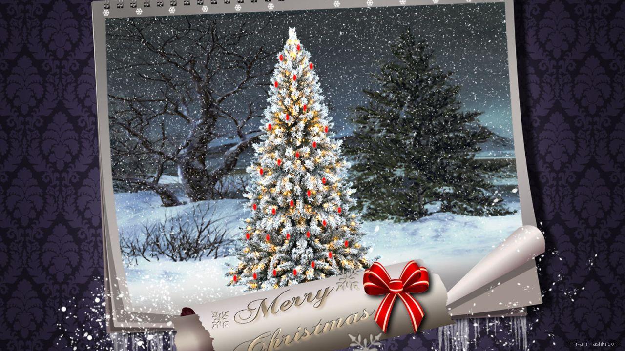 Картинка с поздравлением на рождество, фиолетовый фон - C Рождеством Христовым поздравительные картинки
