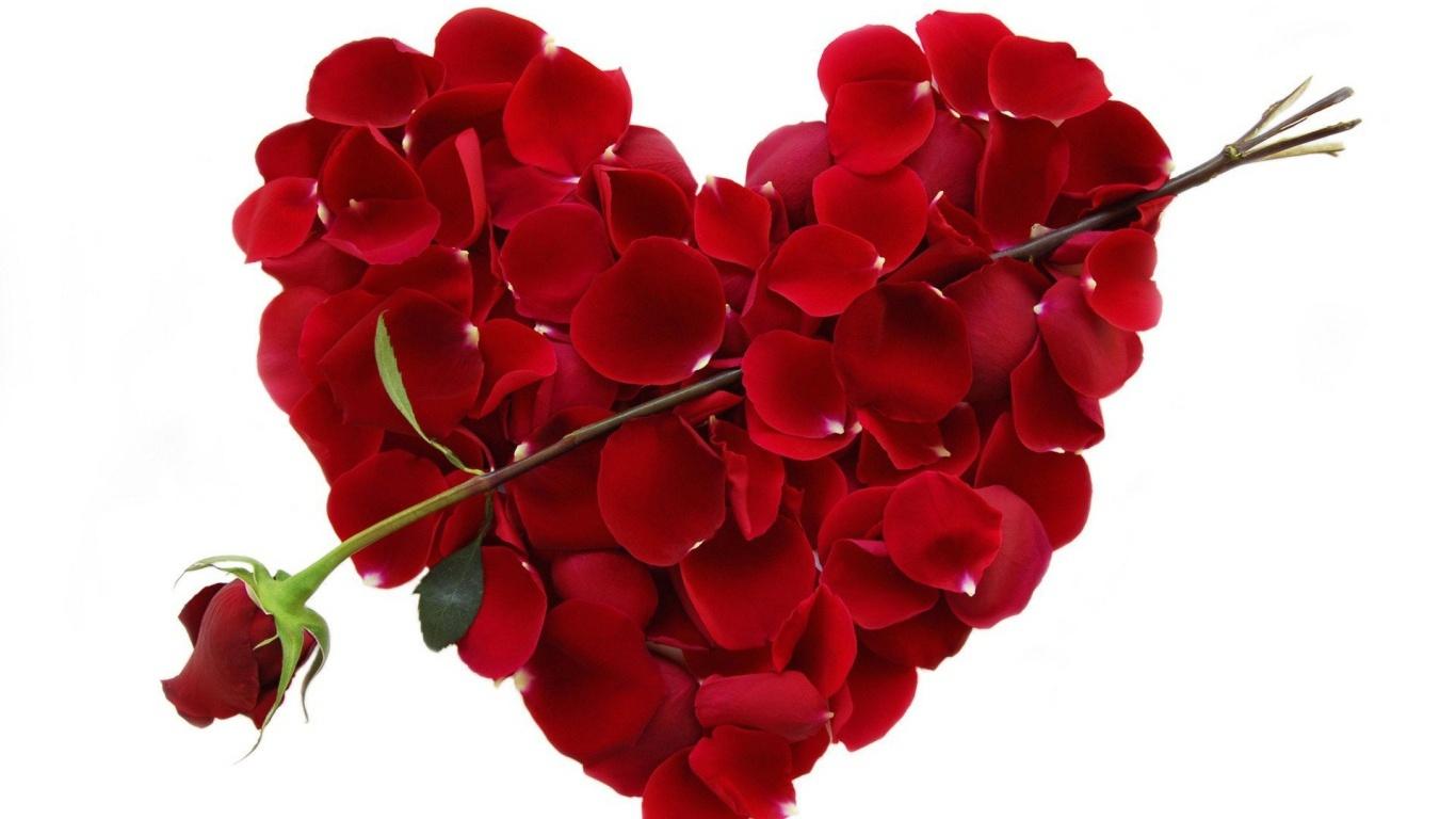 Роза и сердце из лепестков на День Влюбленных 14 февраля - С днем Святого Валентина поздравительные картинки