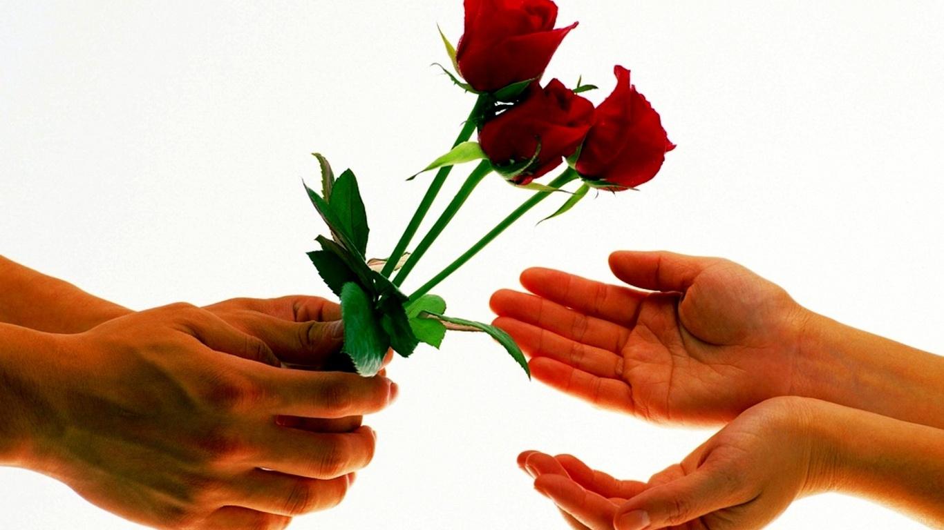 Розы на День Святого Валентина 14 февраля - С днем Святого Валентина поздравительные картинки