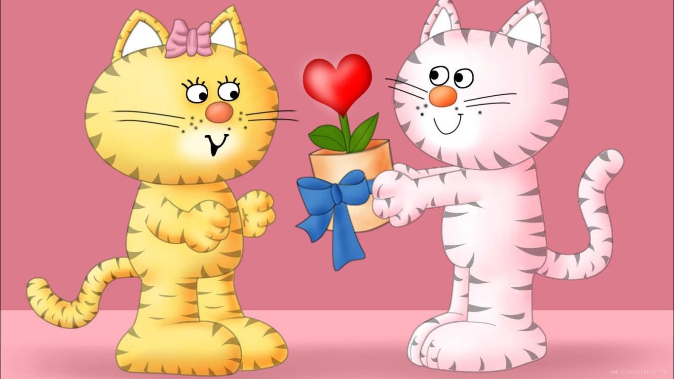 Кошачья любовь на День Святого Валентина 14 февраля - С днем Святого Валентина поздравительные картинки
