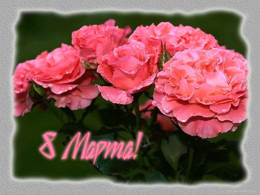 Красивая открытка на 8 Марта - C 8 марта поздравительные картинки