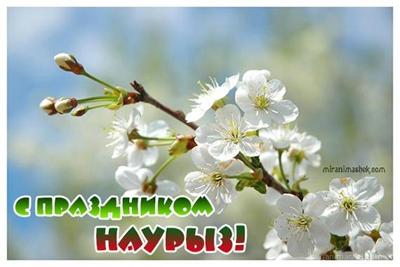 С праздником Наурыз - Навруз — Наурыз Мейрамы поздравительные картинки