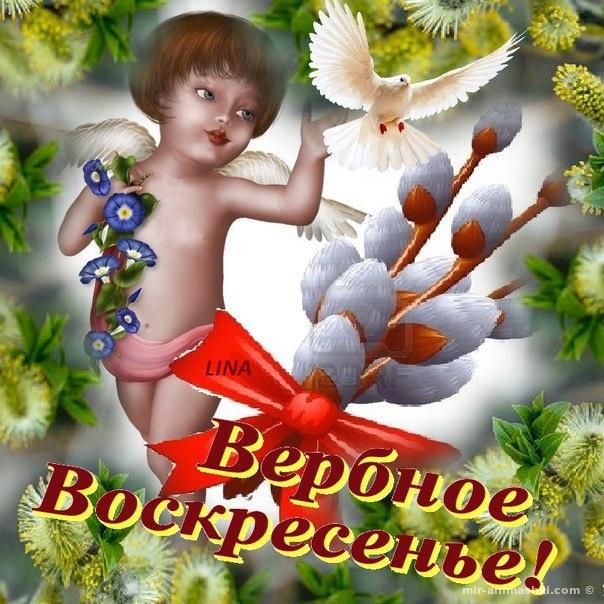Картинки с вербным воскресеньем скачать бесплатно - С Вербным Воскресеньем поздравительные картинки