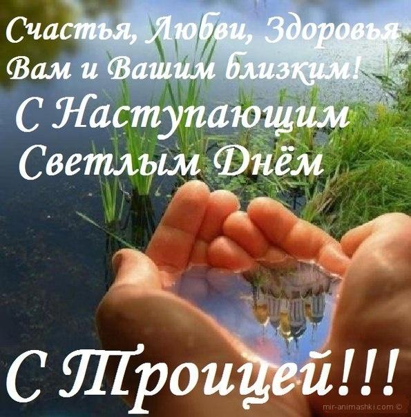 С днем Святой Троицы! - С Троицей поздравительные картинки