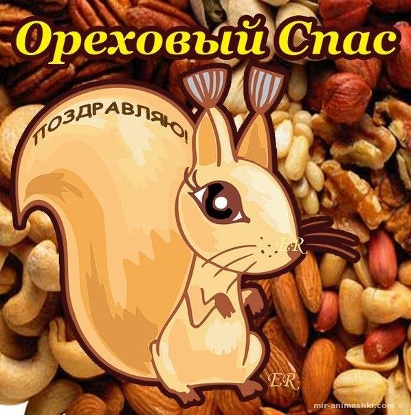 С ореховым Спасом картинка с белкой и орехами - С Ореховым и Хлебным Спасом поздравительные картинки