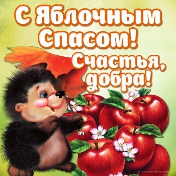 С яблочный спасом! Счастья, добра! - С Яблочным Спасом поздравительные картинки