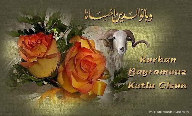 Праздник жертвоприношения Ид аль-Адха - Курбан Байрам - Ид аль Адха поздравительные картинки