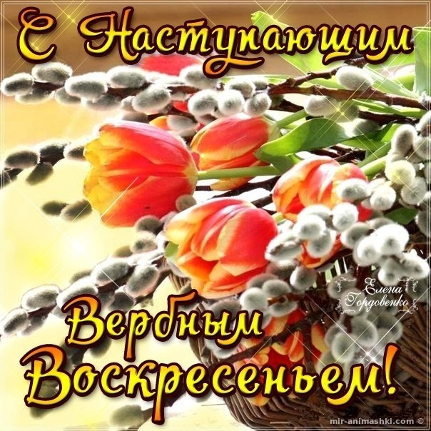 Поздравительные картинки с Вербным Воскресеньем - С Вербным Воскресеньем поздравительные картинки
