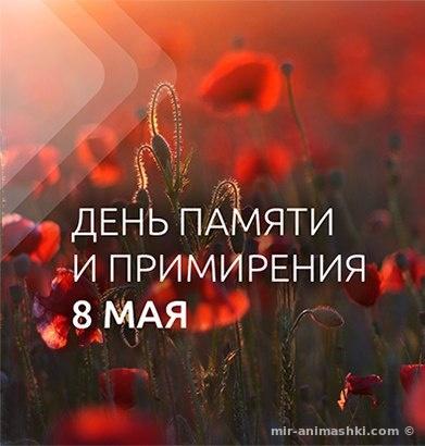Поздравления с 9 мая в открытках - С Днём Победы 9 мая поздравительные картинки