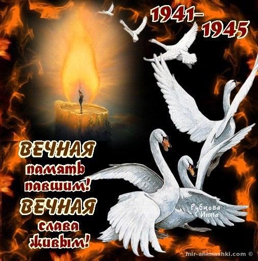Открытки с поздравлениями на 9 мая - С Днём Победы 9 мая поздравительные картинки