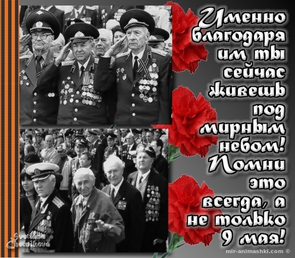 Трогательные картинки на 9 мая - С Днём Победы 9 мая поздравительные картинки
