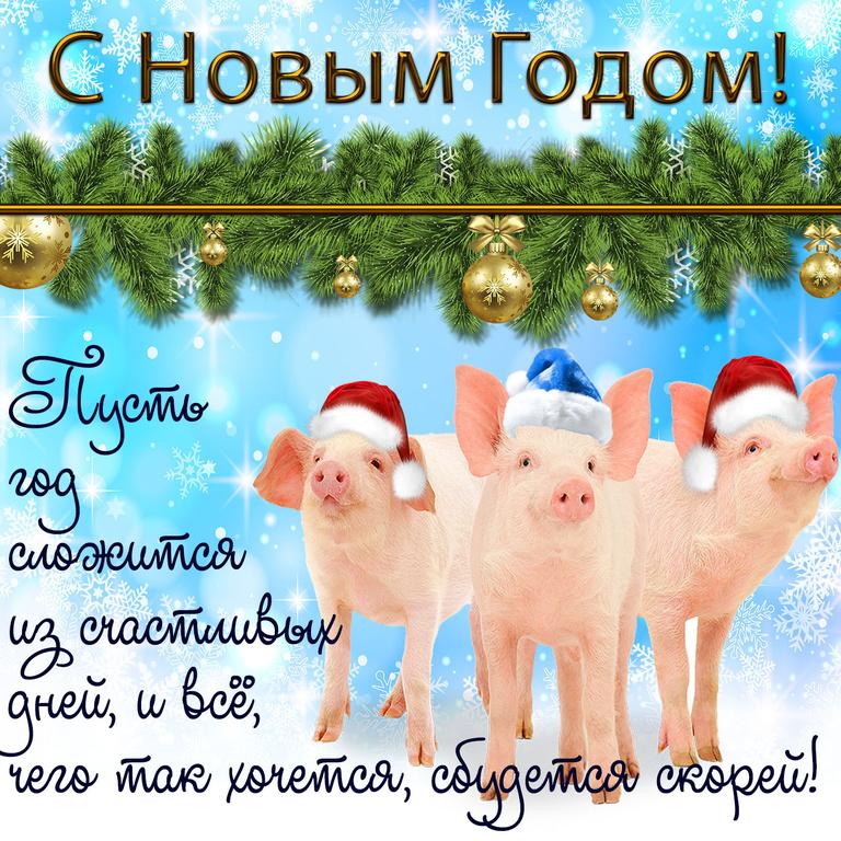 Прикольная картинка с новым годом Свиньи - C Новым годом 2019 поздравительные картинки