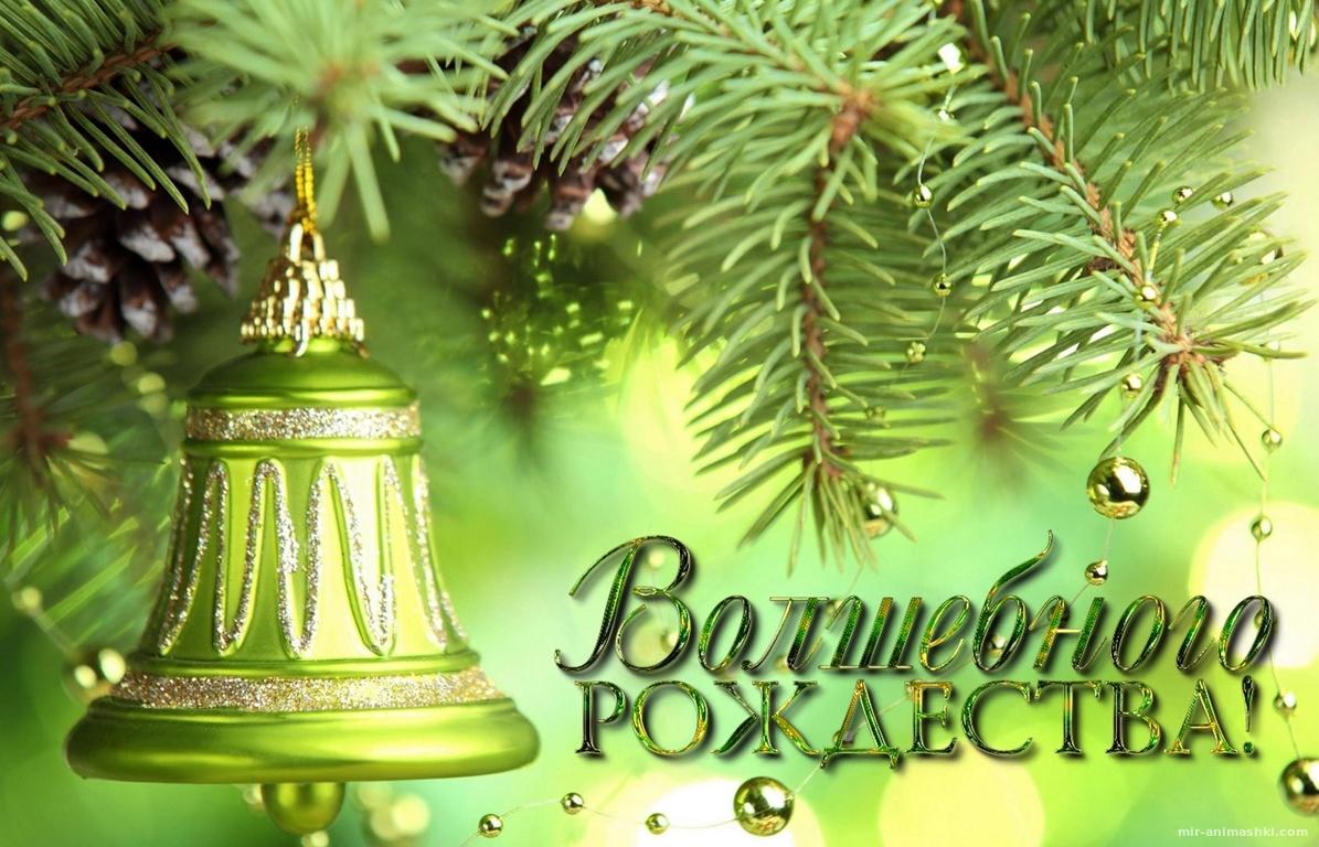 Открытка с пожеланием Волшебного Рождества - C Рождеством Христовым поздравительные картинки