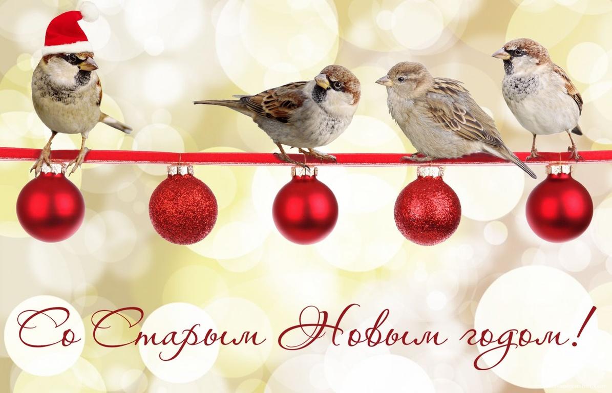 Птички на веточке с игрушками - Cо Старым Новым годом поздравительные картинки