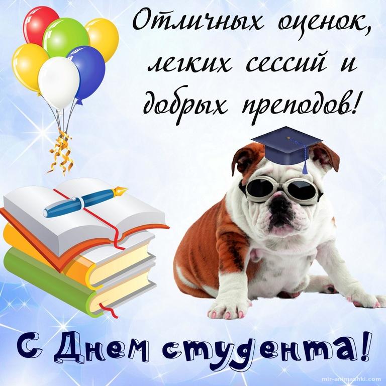 Умная собачка в очках и пожелание - С днем студента поздравительные картинки