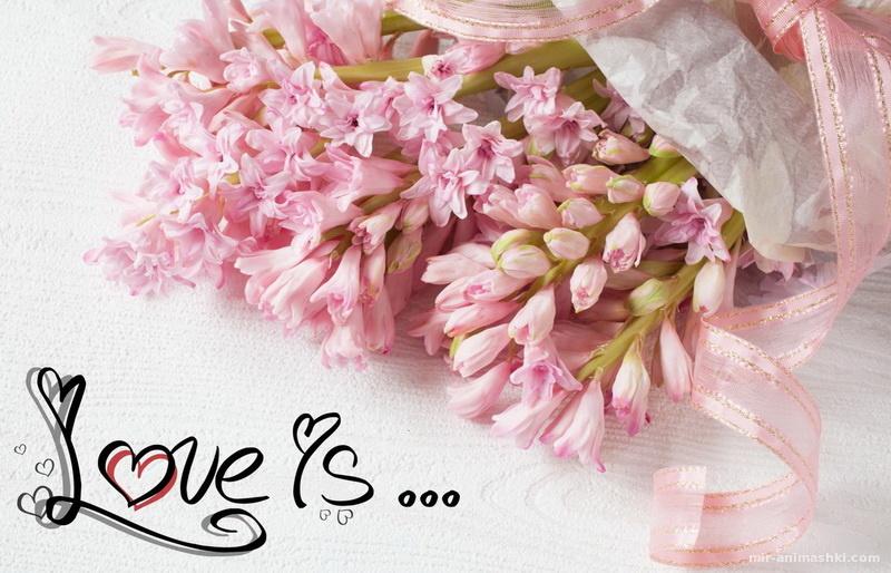 Открытка с днем Святого Валентина, букет розовых цветов - С днем Святого Валентина поздравительные картинки