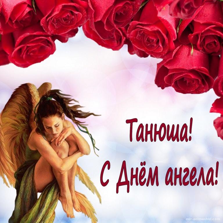 Ангел в красивом оформлении из роз - Татьянин День поздравительные картинки