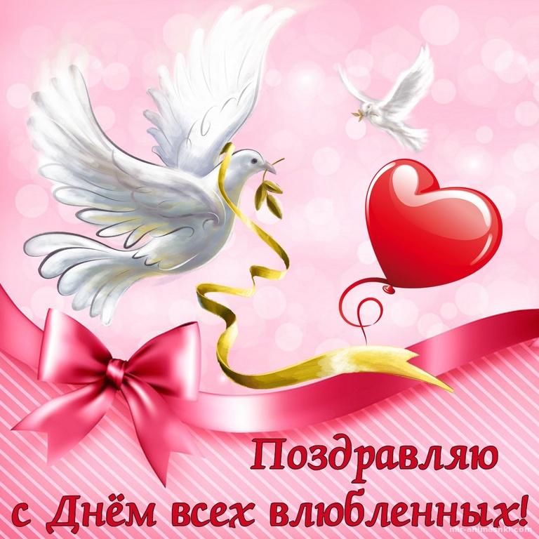 Голуби на День всех влюбленных - С днем Святого Валентина поздравительные картинки