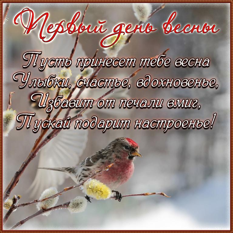 Картинка с птичкой на первый день весны - Весна поздравительные картинки
