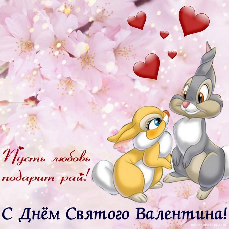 Влюбленные зайцы и розовые цветы - С днем Святого Валентина поздравительные картинки