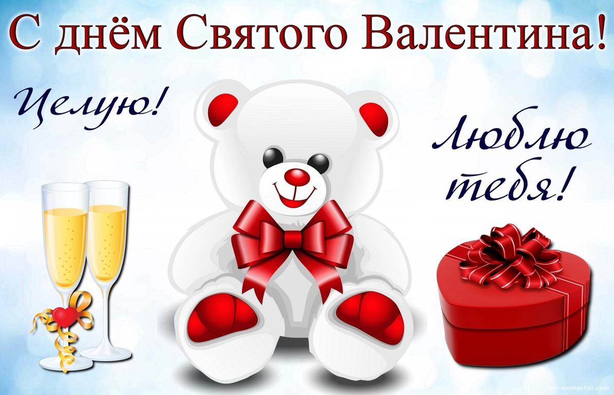 Белый мишка, подарок и шампанское - С днем Святого Валентина поздравительные картинки