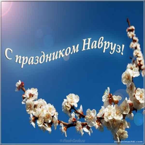 Картинка на наурыз - Навруз — Наурыз Мейрамы поздравительные картинки