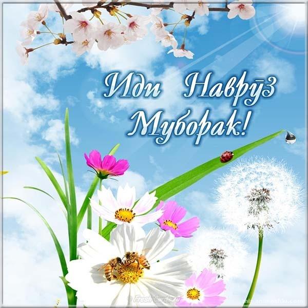 Навруз муборак картинка - Навруз — Наурыз Мейрамы поздравительные картинки