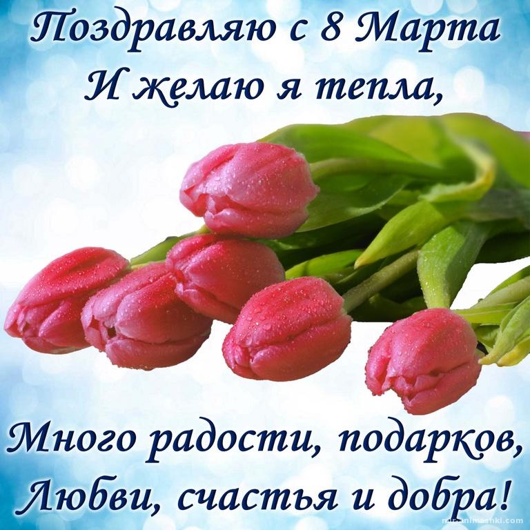 Поздравление и красивые тюльпаны на 8 марта - C 8 марта поздравительные картинки