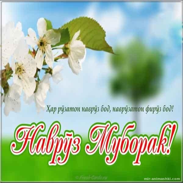 Картинка к празднику наурыз - Навруз — Наурыз Мейрамы поздравительные картинки