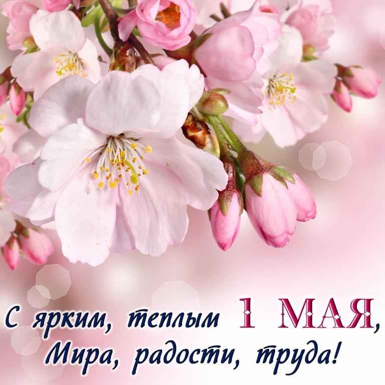 Красивая открытка с весенними цветами на 1 мая - Поздравления с 1 мая поздравительные картинки