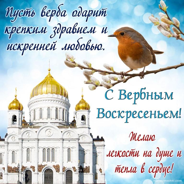 Снегирь на ветке на фоне храма - С Вербным Воскресеньем поздравительные картинки