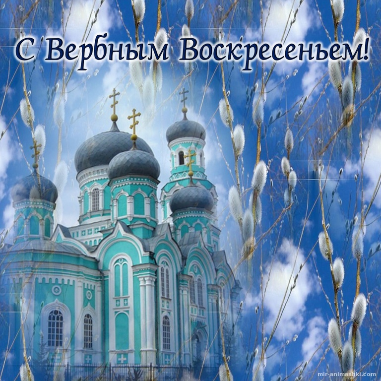Верба на фоне церкви к Вербному Воскресенью - С Вербным Воскресеньем поздравительные картинки