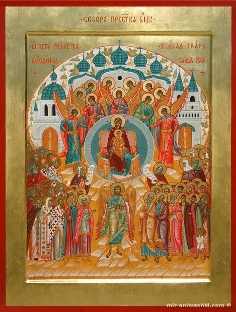 Собор Пресвятой Богородицы - 8 января 2020