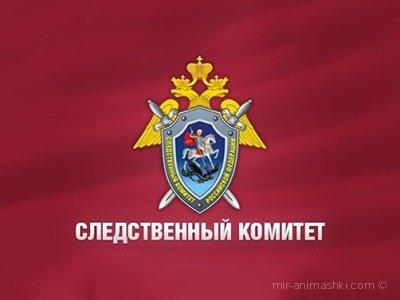 День следственного комитета РФ