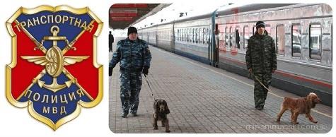 День транспортной полиции России - 18 февраля 2019