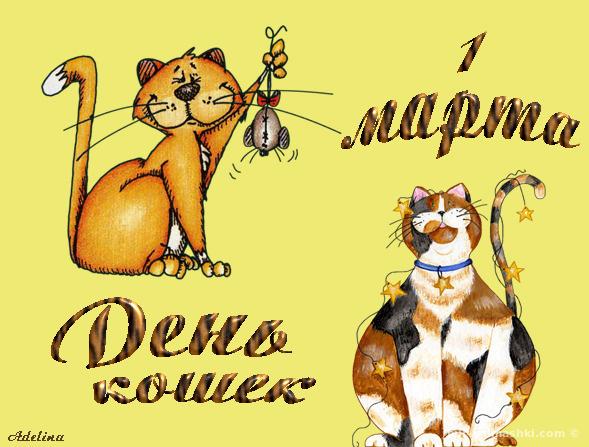День кошек в России - 1 марта 2019
