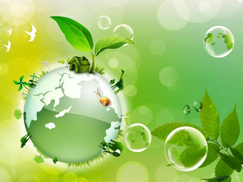 День эколога - 5 июня 2019