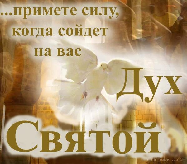 Духов день. День Святого Духа - 8 июня 2020