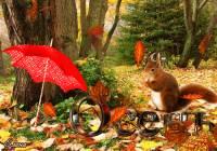 Осень пришла!) - Осень открытки и картинки