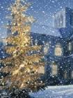 Зима анимашка - Блестяшки на телефон открытки и картинки