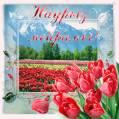 Наурыз Мейрамы 2021 открытки - Навруз открытки и картинки