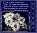 Пожелание в стихах - Со стихами открытки и картинки