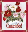 КРАСИВОЕ СПАСИБО - Спасибо открытки и картинки