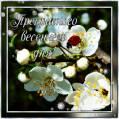 Прекрасного весеннего дня - Добрый день открытки и картинки