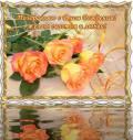 желтые розы - День Рождения открытки и картинки