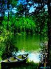 летний пейзаж - Лето открытки и картинки