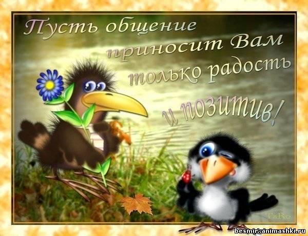 приятного общения!~Анимационные блестящие открытки GIF