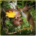 Осенний приветик! - Привет открытки и картинки