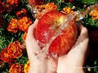 С Яблочным спасом - Яблочный Спас открытки и картинки
